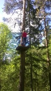 puussa